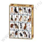 Шоколадные собаки подарок